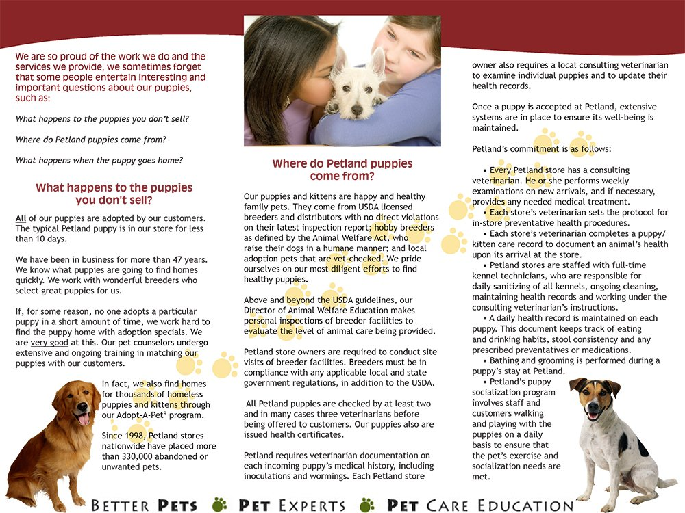"""persuasive speech on pet adopt and breeders Some breeders truly love their animals and care about producing the healthiest and best 5 comments on """"5 reasons why everyone should adopt a pet"""" sign on with."""